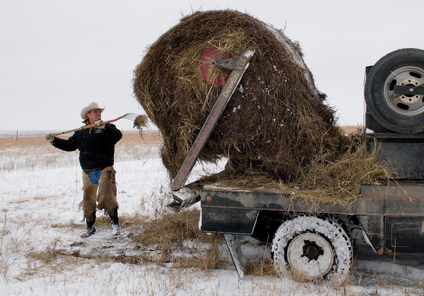 winter_ranching_0858_web